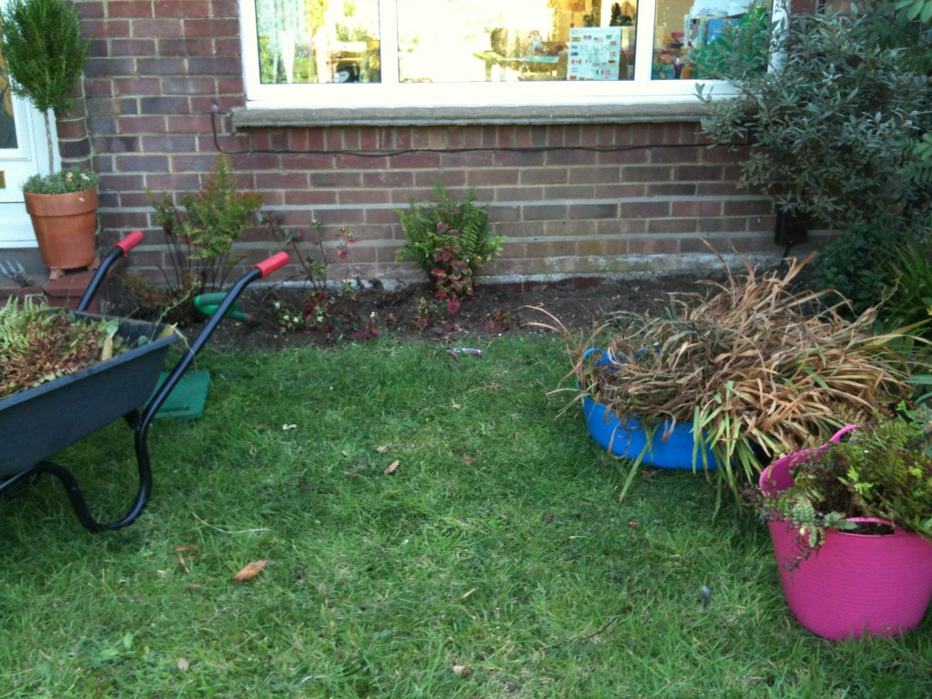 Digginguptheplants