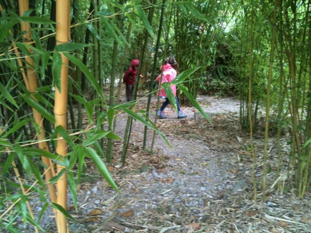 Bambooserie