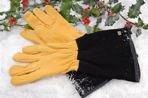 Gold Leaf Gloves