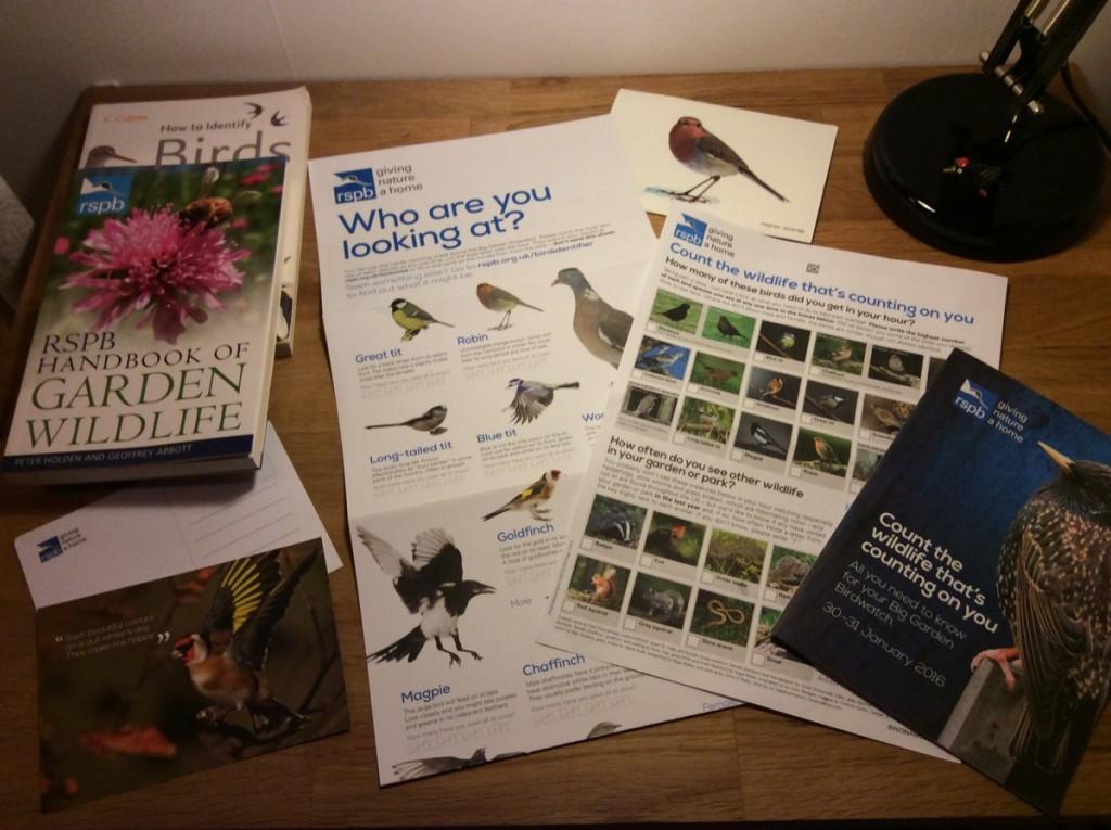 RSPB Big Birdwatch pack