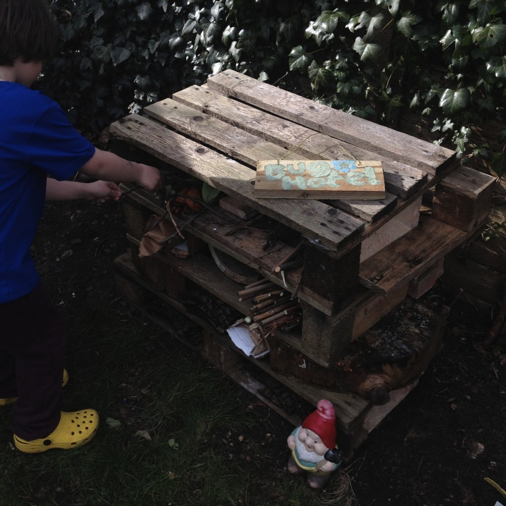 Filling the bug hotel