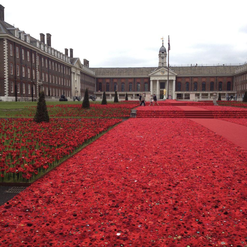 Chelsea poppies 2