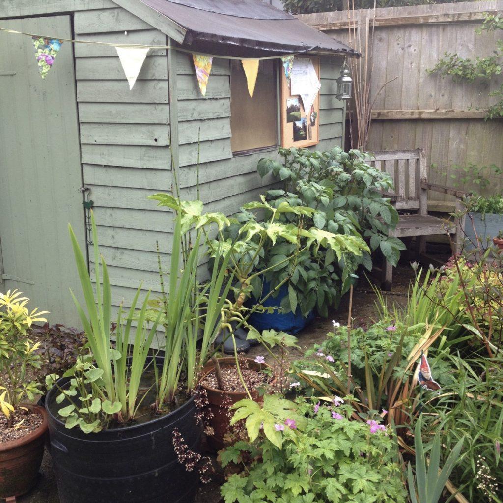 Open garden shed